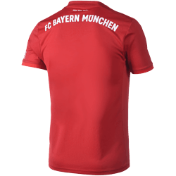 Adidas FC Bayern München Trikot 2019/2020 Heim (2)