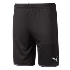 Puma Borussia Dortmund Shorts 2019/2020 Grau Kinder