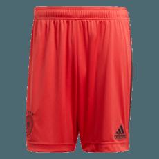 Adidas Deutschland DFB Torwartshorts Heim Kinder EM 2021