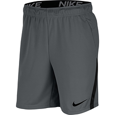 Nike Shorts Dri-Fit Grau