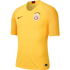 Nike Galatasaray Istanbul T-Shirt Training
