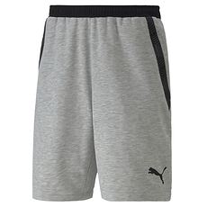 Puma Shorts Team FINAL 21 Grau