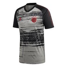 Adidas FC Bayern München Präsentations-Shirt 2020/2021 Grau