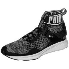 Puma Sneaker Ignite evoKNIT schwarz/weiß
