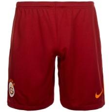 Nike Galatasaray Istanbul Shorts 2017/2018 Heim