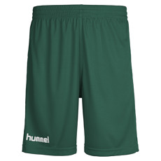 hummel Shorts Core Poly grün