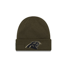 New Era Carolina Panthers Beanie Salute To Service grün
