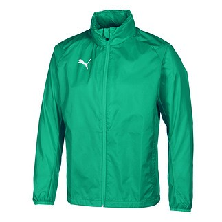Puma Trainingsregenjacke Core LIGA Grün