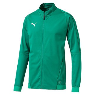 Puma Jacke FINAL Training Grün