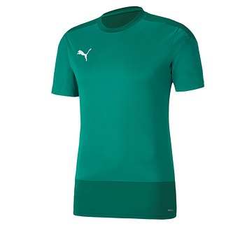 Puma Training Shirt GOAL 23 Grün