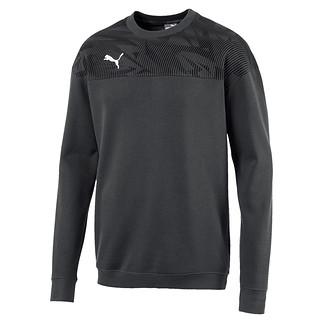 Puma Sweatshirt CUP Casuals Grau