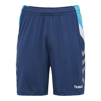 hummel Shorts Tech Move Poly sargasso