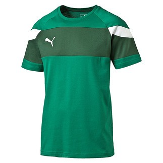 Puma T-Shirt Spirit Grün