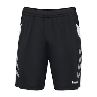 hummel Shorts Tech Move Poly schwarz