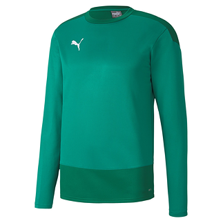 Puma Training Sweatshirt GOAL 23 Grün