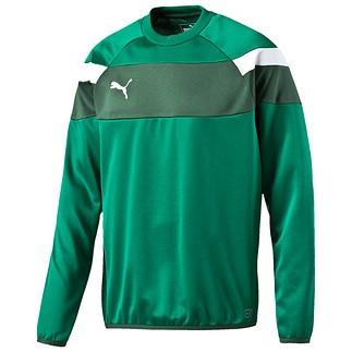 Puma Sweatshirt Spirit Grün