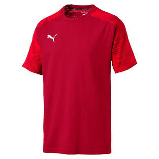 Puma T-Shirt CUP Sideline Rot
