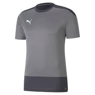 Puma Training Shirt GOAL 23 Grau