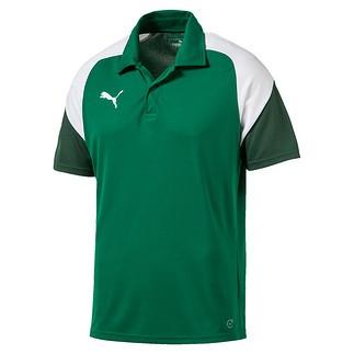 Puma Polo Shirt Team Grün/Weiß