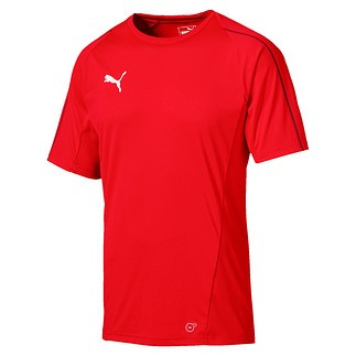 Puma T-Shirt FINAL Training Rot