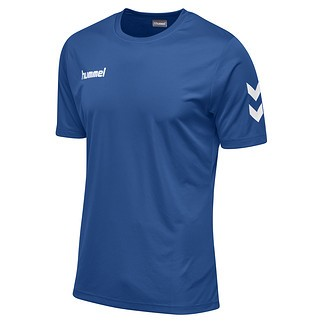 hummel T-Shirt Core Poly blau