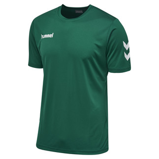 hummel T-Shirt Core Poly grün