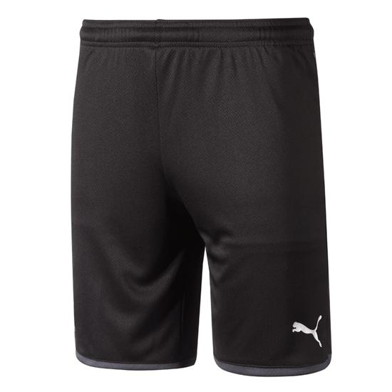Puma Borussia Dortmund Shorts 2019/2020 Grau