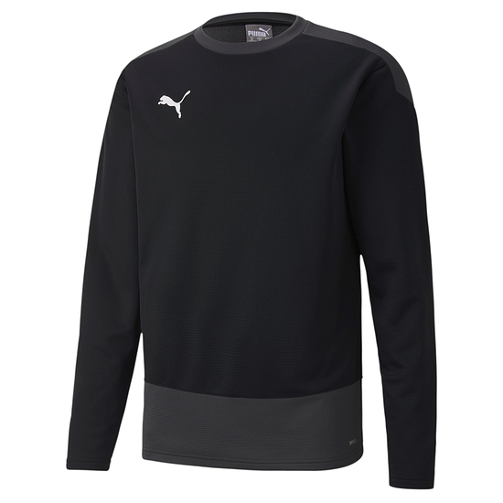 Puma Training Sweatshirt GOAL 23 Schwarz