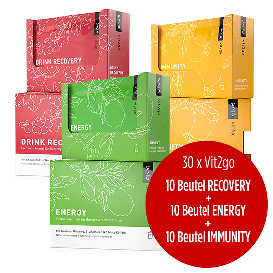 Vit2go Energy Immunity Drink Recovery 3x10 Beutel bunt