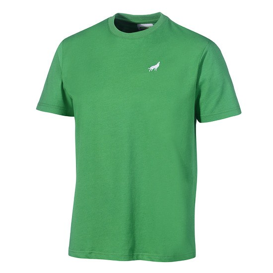 Kappa VfL Wolfsburg T-Shirt Unbranded grün