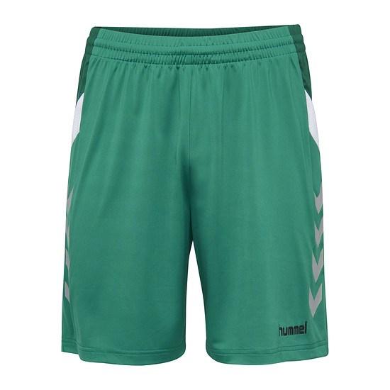 hummel Shorts Tech Move Poly grün