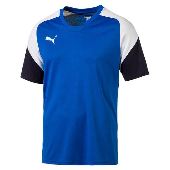 Puma Freizeit Shirt Team Blau/Weiß