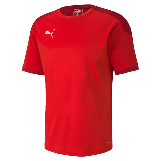 Puma Training Shirt Team FINAL 21 Rot