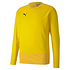 Puma Training Sweatshirt GOAL 23 Gelb (1)