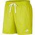 Nike Freizeit- und Badeshorts Grün