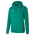 Puma Hoodie GOAL 23 Grün