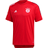 Adidas FC Bayern München Trainingsshirt 2020/2021 Rot/Schwarz (1)