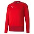 Puma Training Sweatshirt GOAL 23 Rot (1)
