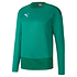 Puma Training Sweatshirt GOAL 23 Grün (1)