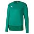 Puma Training Sweatshirt GOAL 23 Grün