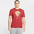 Nike AS Rom T-Shirt Training 2020/2021 (1)