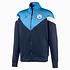 Puma Manchester City Track Jacket Basic Blau (1)