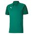 Puma Poloshirt GOAL 23 Team Grün