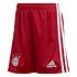 Adidas FC Bayern München Trikot 2020/2021 Heim Mini Kit (5)
