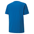 Puma T-Shirt GOAL 23 Blau (2)