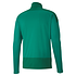Puma Training Top 1/4 Zip GOAL 23 Grün (2)