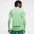 Nike Nigeria Longsleeve NIGERIA Grün (2)