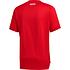 Adidas FC Bayern München Trainingsshirt 2020/2021 Rot/Schwarz (2)