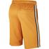 Nike Shorts Tribute Mais (2)