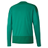 Puma Training Sweatshirt GOAL 23 Grün (2)